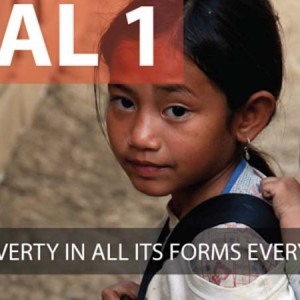 The 17 Goals of the Post-2015 Development Agenda